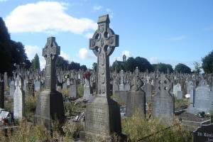 limerick burial records go online