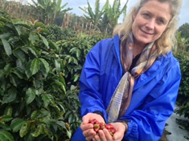 organic coffee beans limerick
